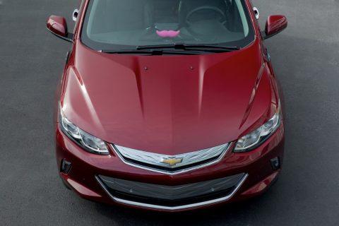 General Motors Lyft
